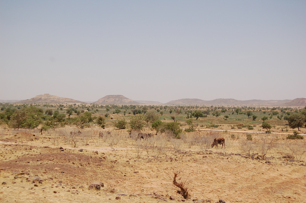 File-landscape-diffa-region-niger-jpg-wikimedia-commons-with-in-world-flag-0