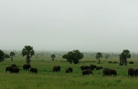 Kidepo-Game-Reserve