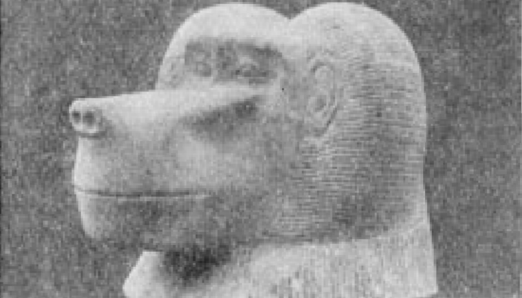 """Alabaster ape's head, lid of canopic jar, """" Figures and models of bricks, made of mud, and a blue"""