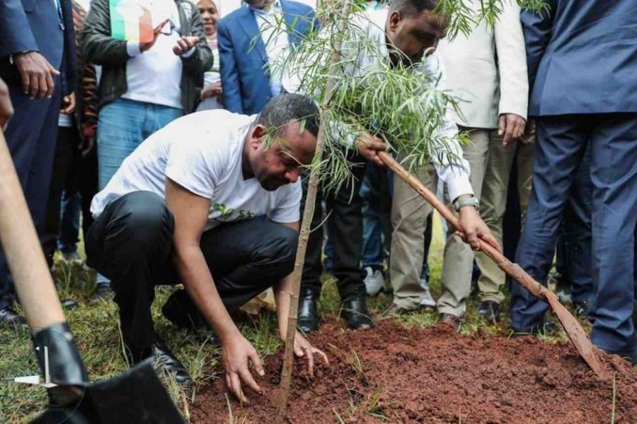 Ethiopian-Legislators-Planting-Trees-Office-of-the-Prime-Minister-Twitter