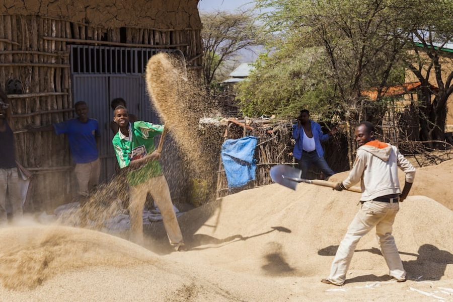 Ethiopia-men-winnowing