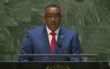 Deputy Prime Minister and Foreign Minister of Ethiopia Demeke Mekonnen
